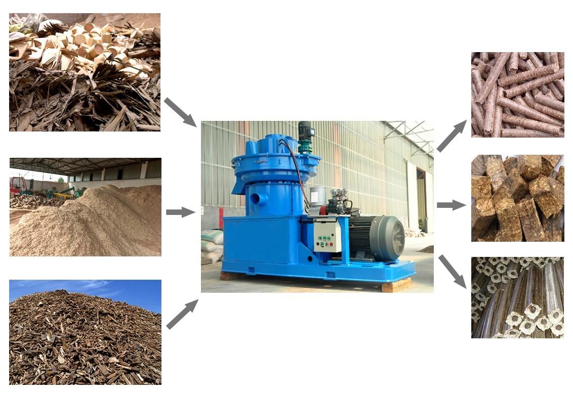 Wood Pellet Plant ~ Ring die wood pellet production line